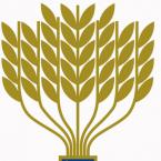 The President's Award for Volunteer 2021